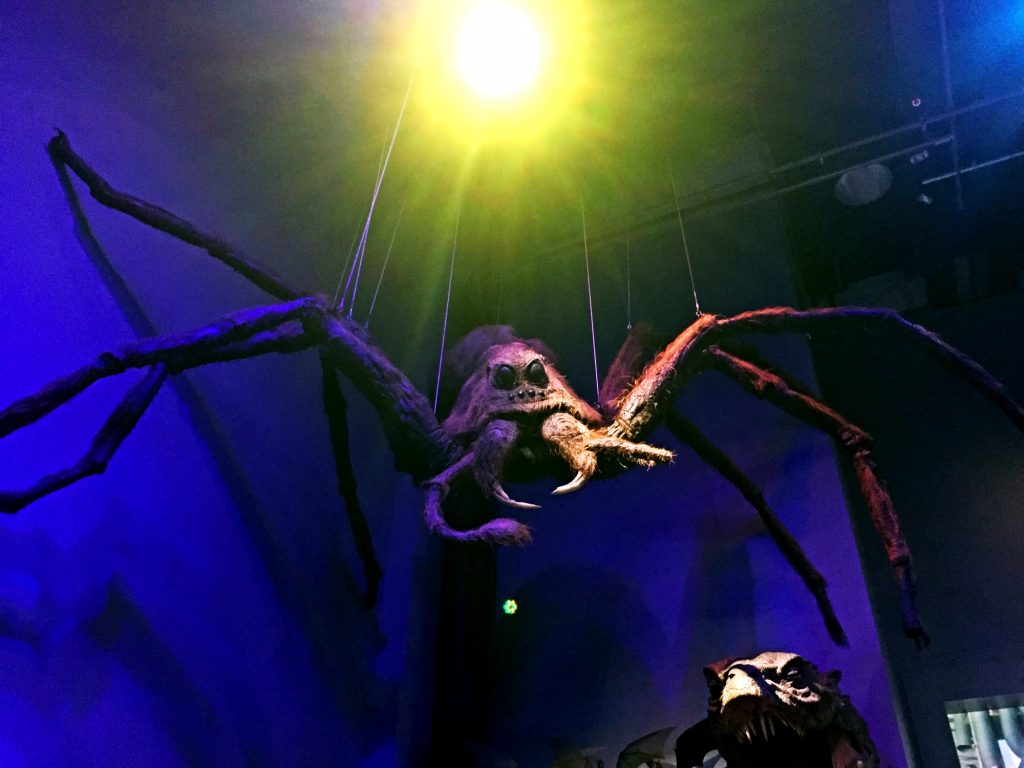 visitare gli Harry Potter Warner Bros Studios-aragog