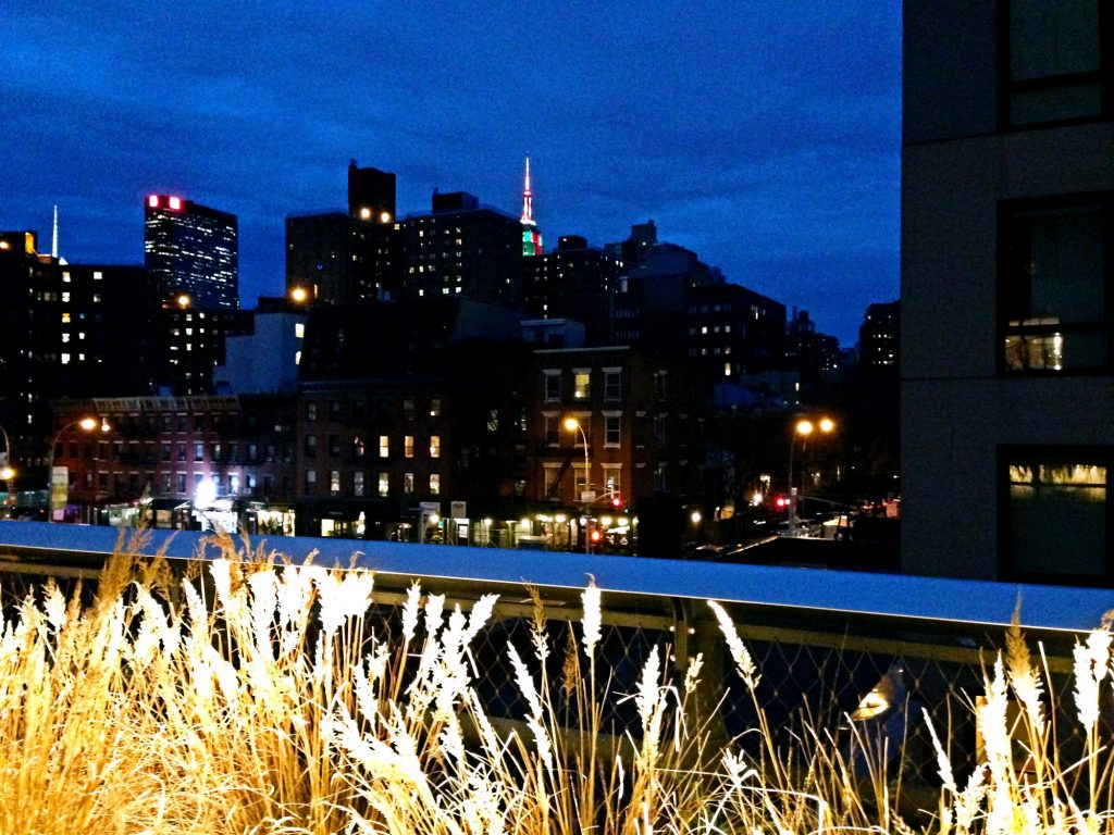 le 10 cose da fare a New York a Natale-high-line