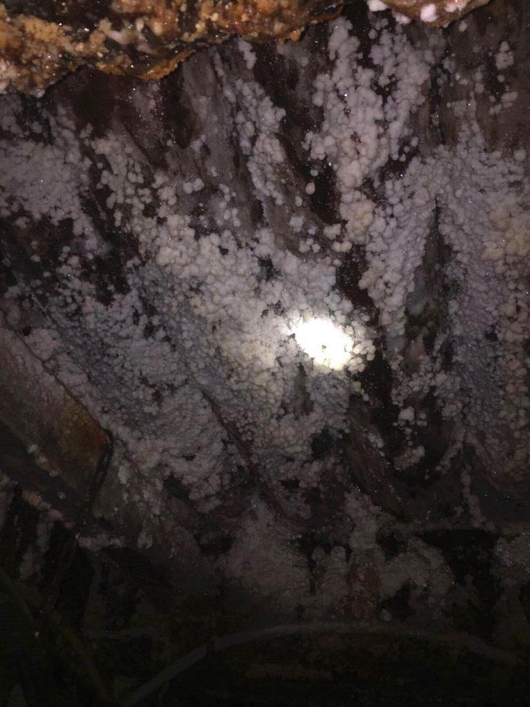 percorso minerario a cracovia-sale-sul-legno