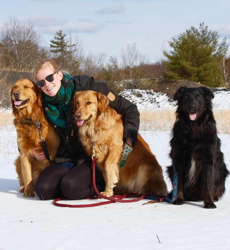 come viaggiare gratis nel mondo-dog-sitter