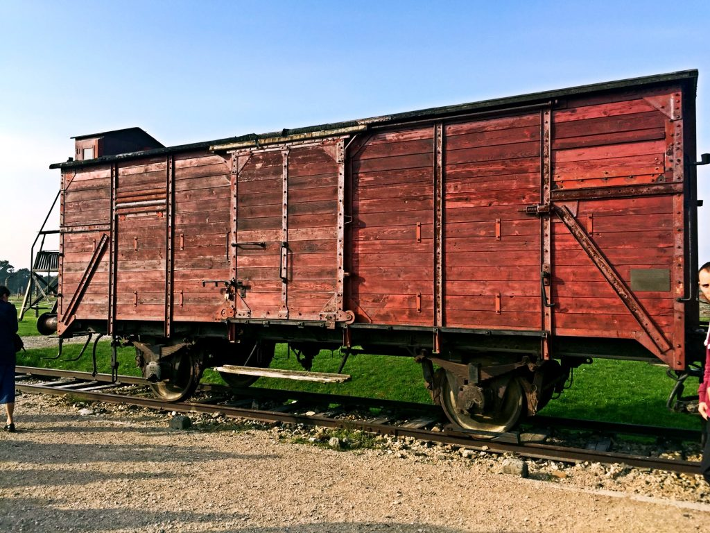 visita ai campi di concentramento di Auschwitz e Birkenau-vagone