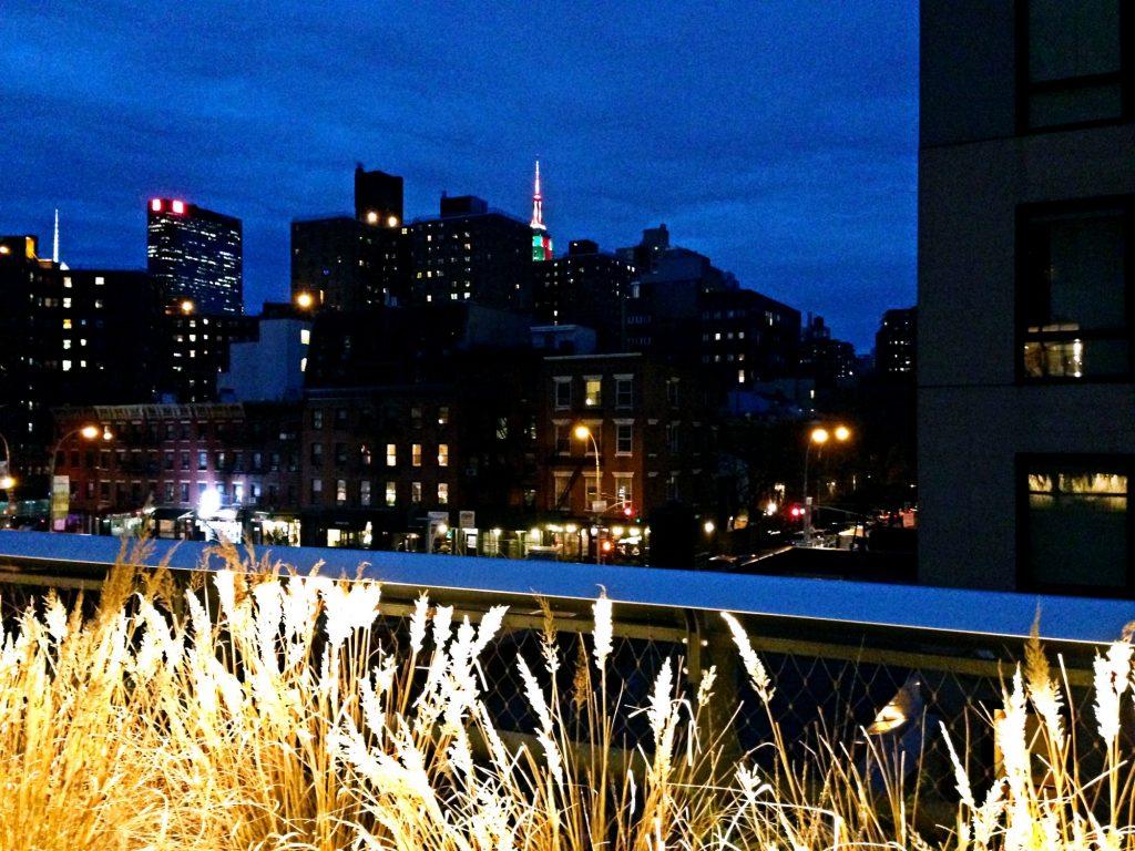 le 10 cose da fare a New York a Natale-high-line