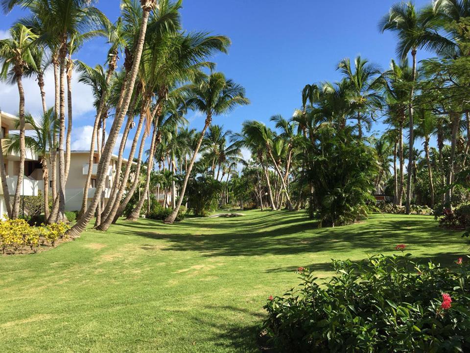 Catalonia Bavaro Resort a Punta Cana-giardino