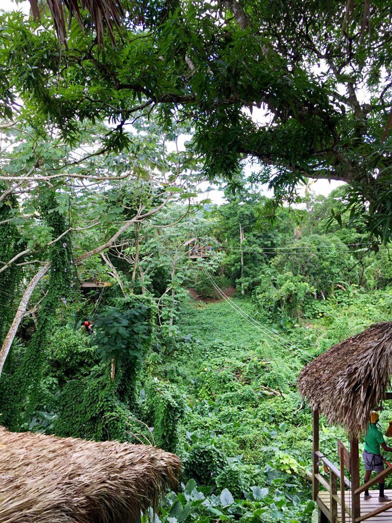 monkeyland a punta cana-zip-line