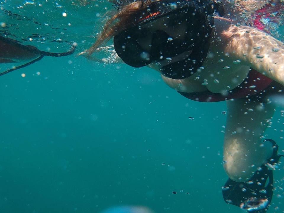 escursione a Isla Saona-snorkeling