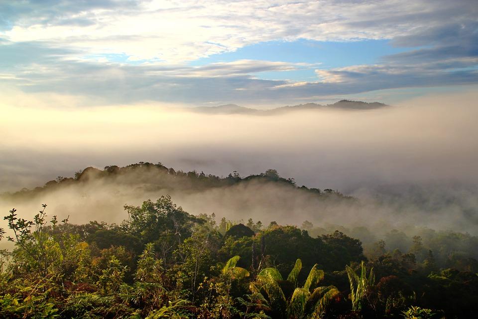 100 luoghi da vedere prima di morire-borneo
