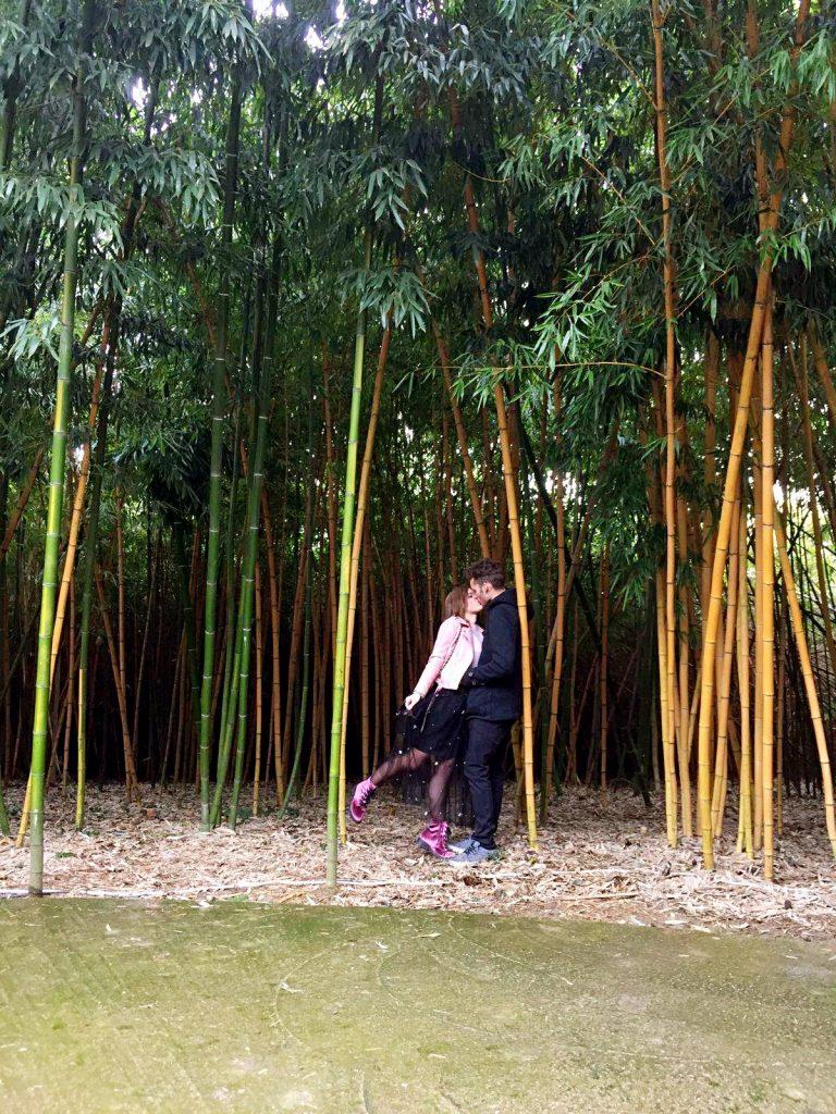 labirinto della masone-noi-canne-bambù
