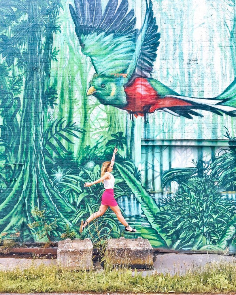 eindhoven in due giorni-graffito