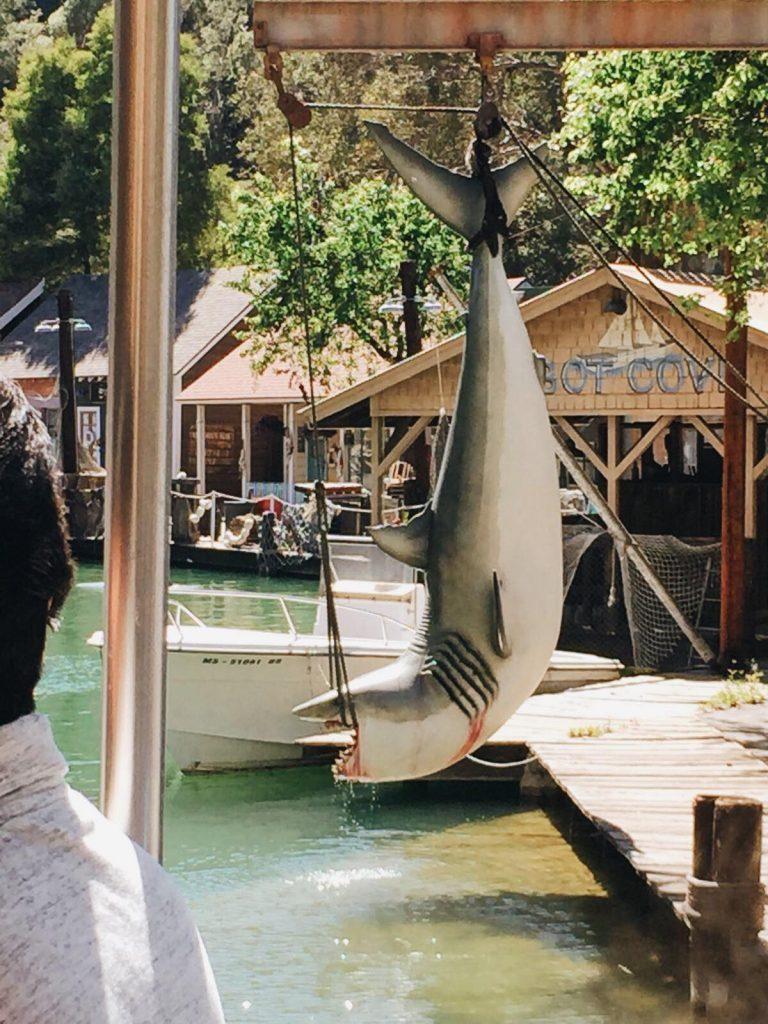 universal studios di los angeles-lo-squalo