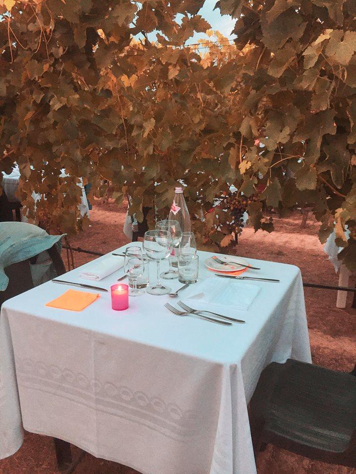 cena in vigna a Bologna