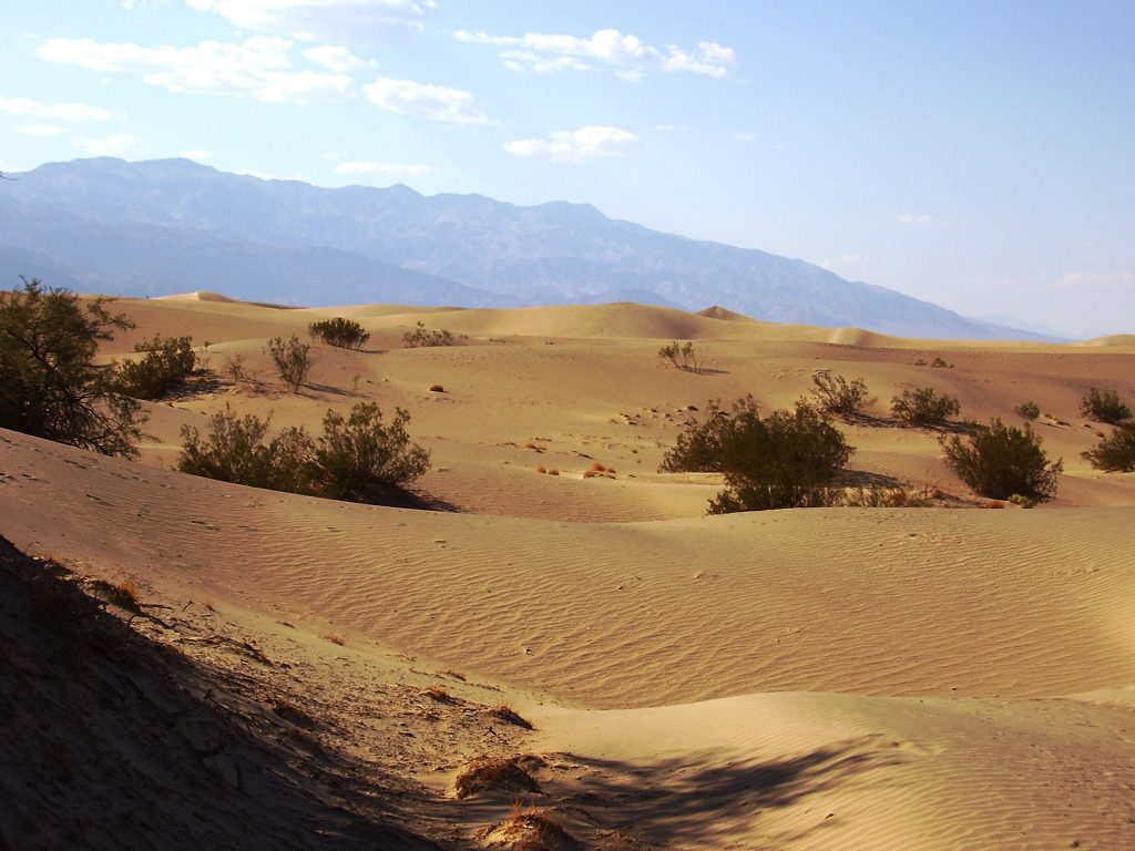 Death Valley in un giorno-dune-di-sabbia