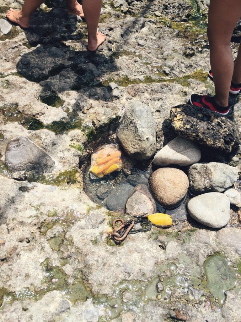 due giorni a Ischia-cibi-cotti-baia-sorgeto