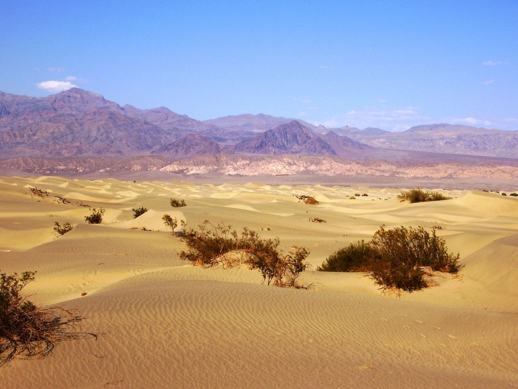 Death Valley in un giorno-sand-dunes