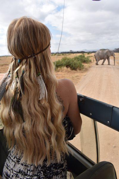 safari nell'Amboseli National Park-sara-nel-van-elefante