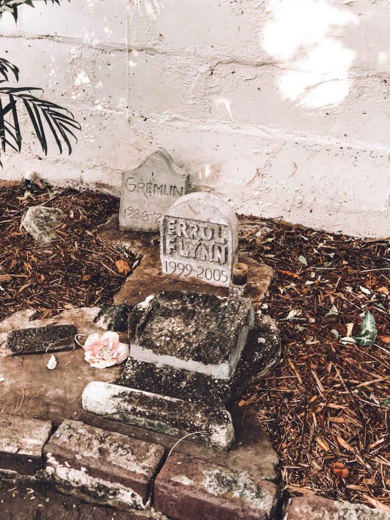 Key West in un giorno-cimitero-gatti