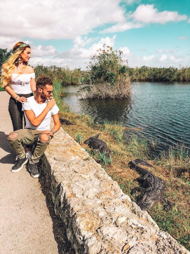come visitare le Everglades-tre-alligatori-entrata