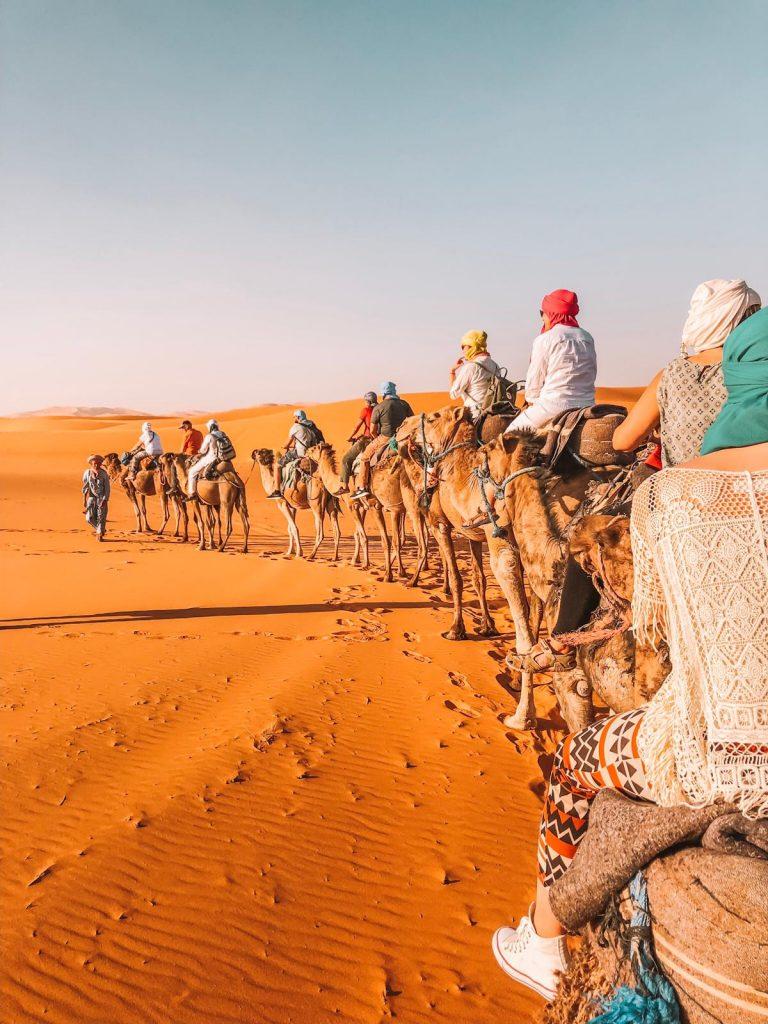 il Marocco è sicuro-cammellata-deserto