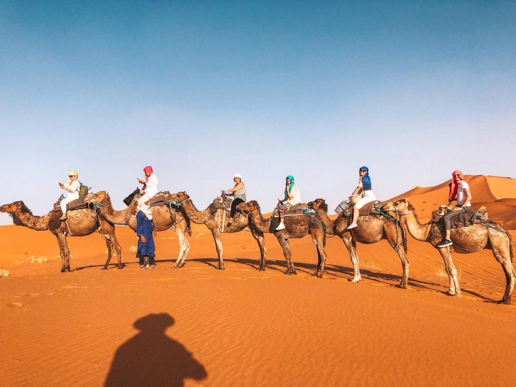 dormire nel deserto in Marocco-cammellata