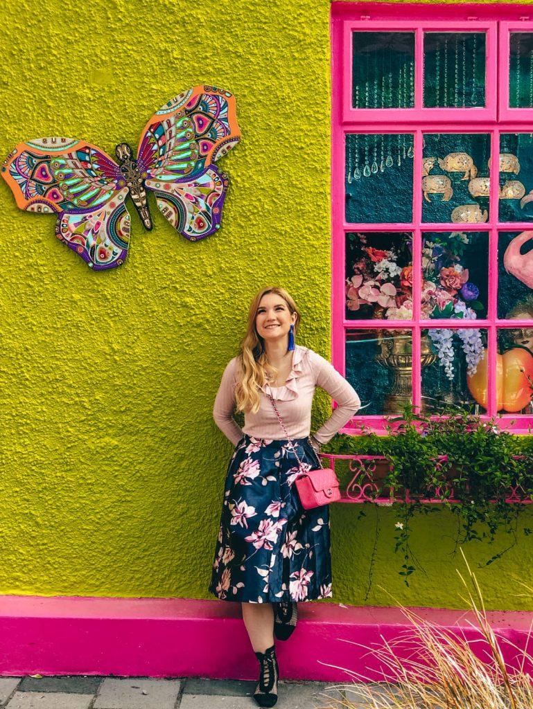 cosa vedere a Kinsale-farfalla