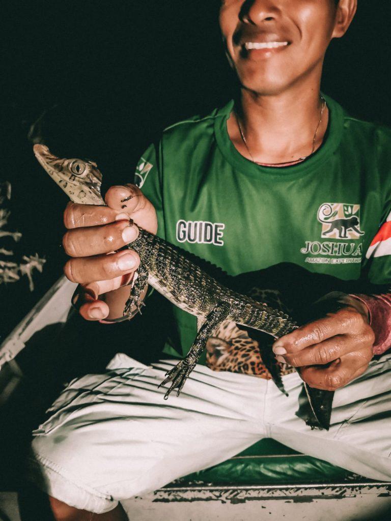 cosa fare in Amazzonia-caimani