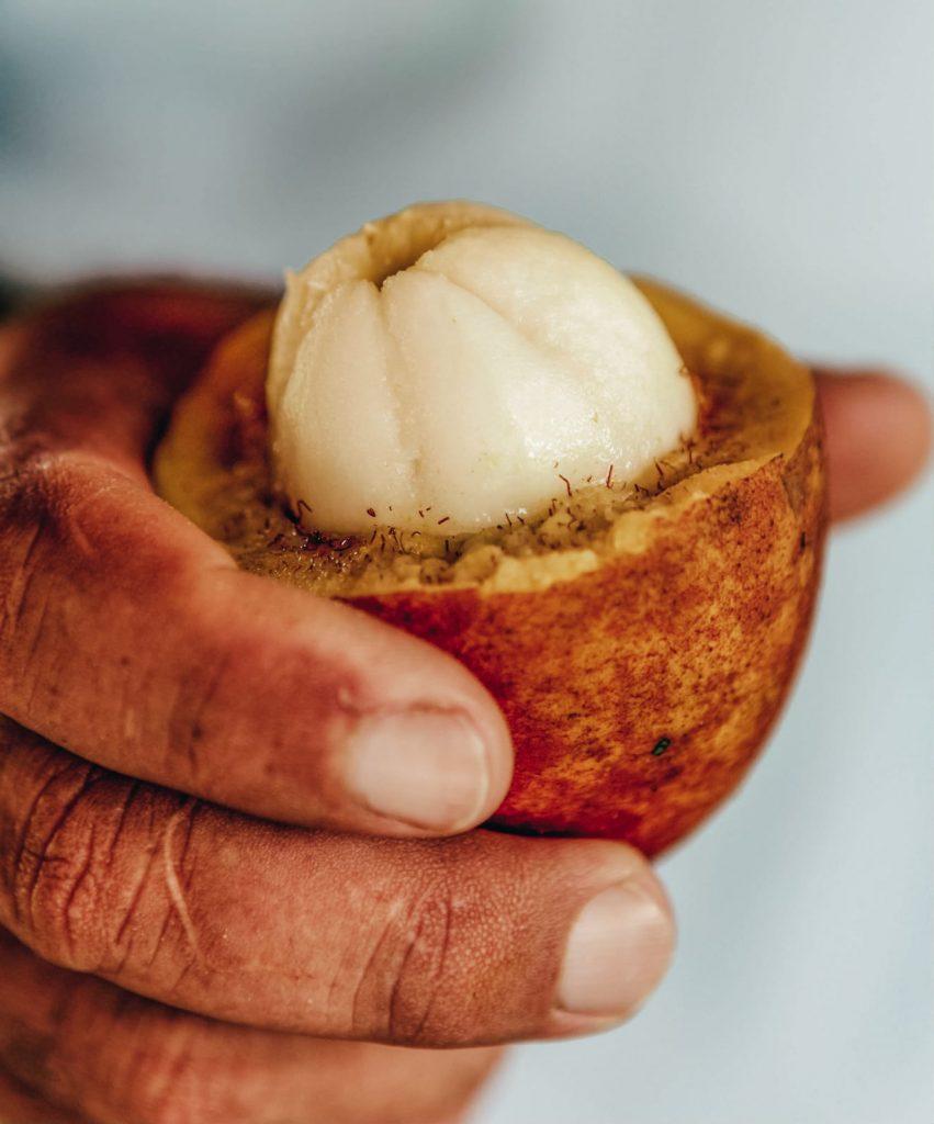 come organizzare un viaggio in Amazzonia-cibo-tipico