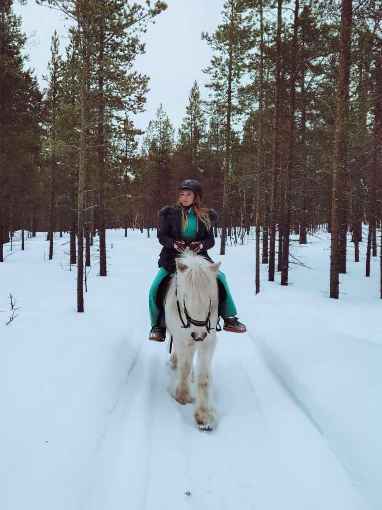 cosa fare in Lapponia svedese in inverno-giro-cavallo