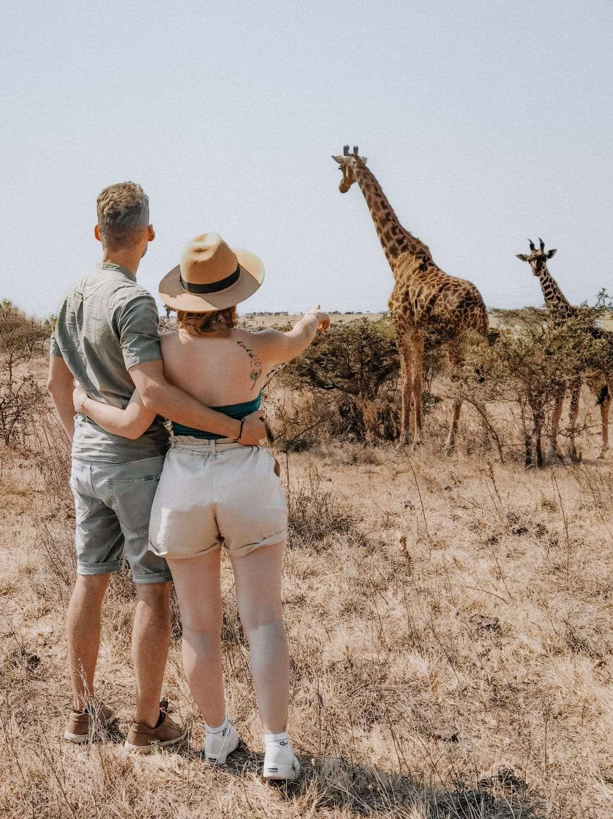 safari in Tanzania-giraffe