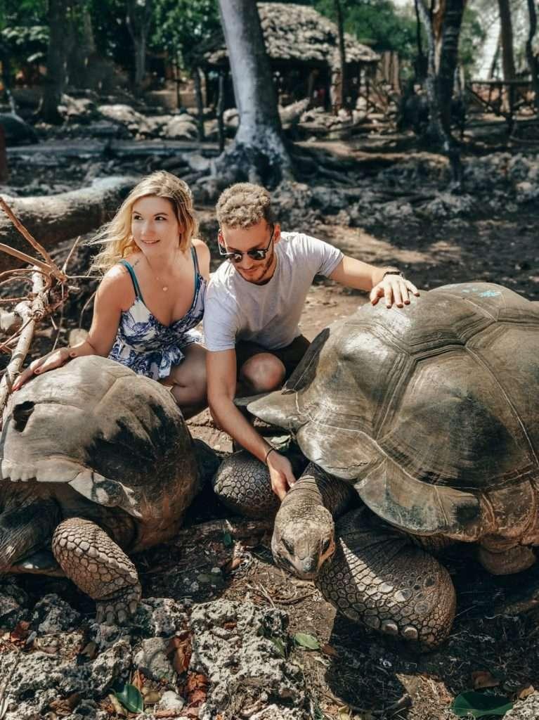 cosa fare a Zanzibar-tartarughe-prison-island