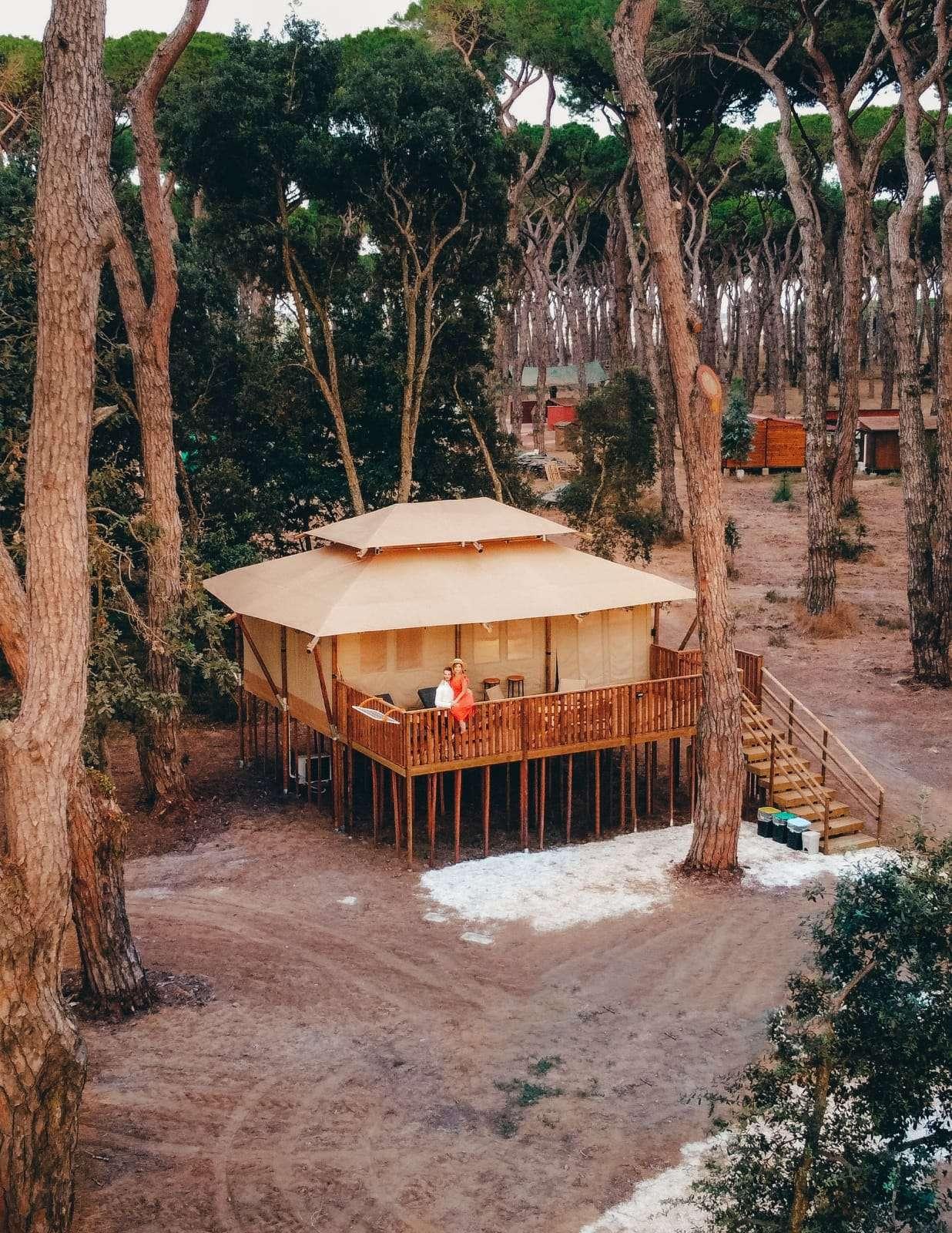 glamping vicino Roma-vawidi-treehouse